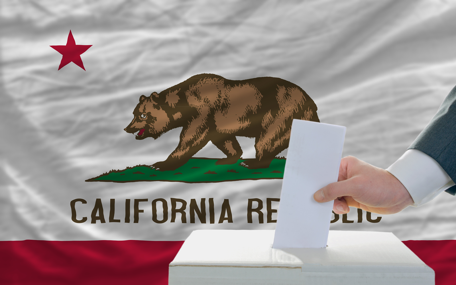 Man Voting in California elections